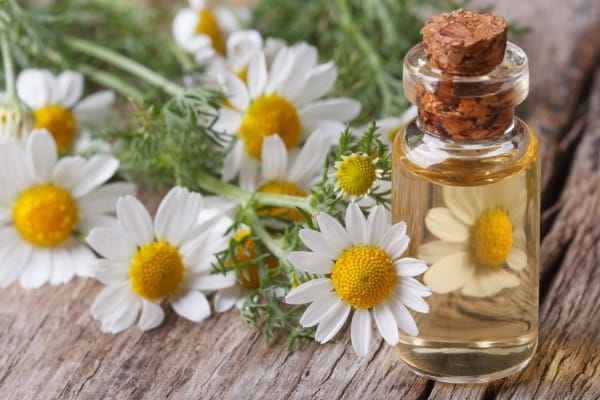 Chamomile-Oil-Recipe_-208208227-600x4001