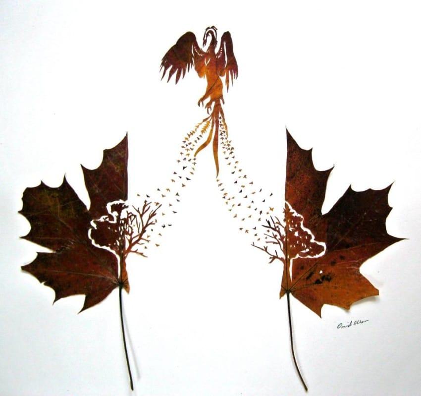 leaf-12-850x7991