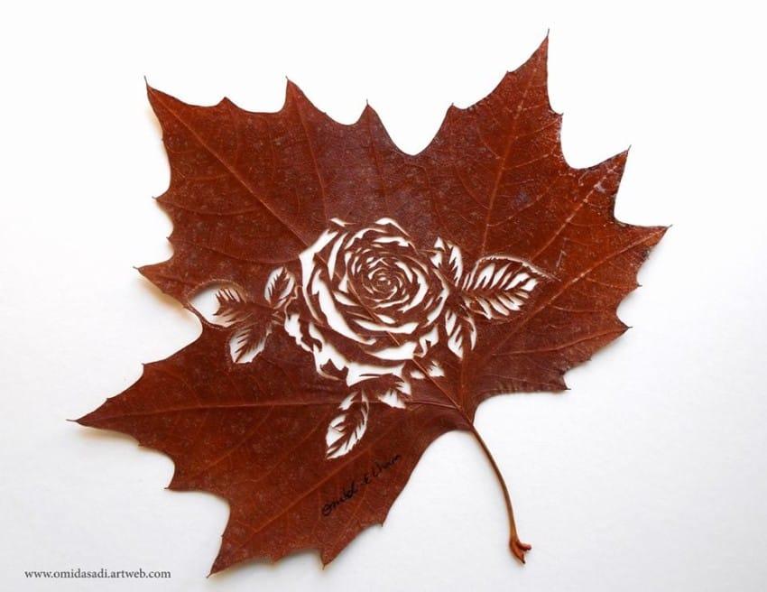 leaf-9-850x6561